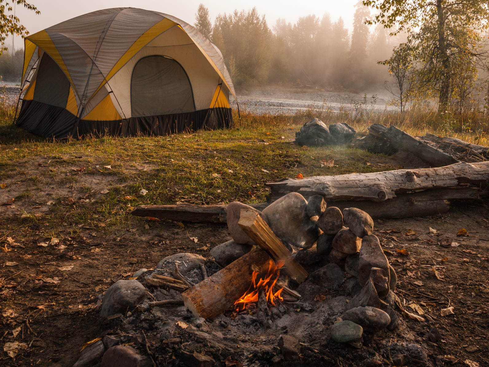 Which Woods Will Burn The Best For Your Campfire?
